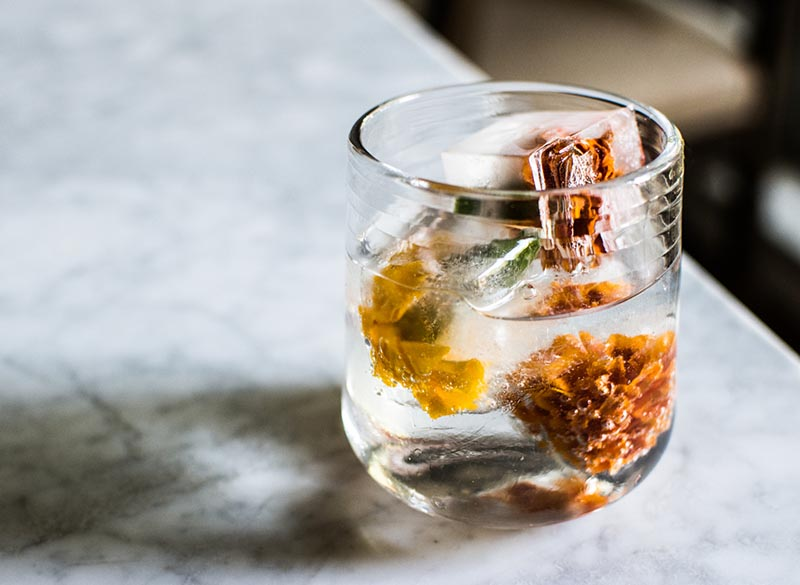 Elderflower Gin and Tonic